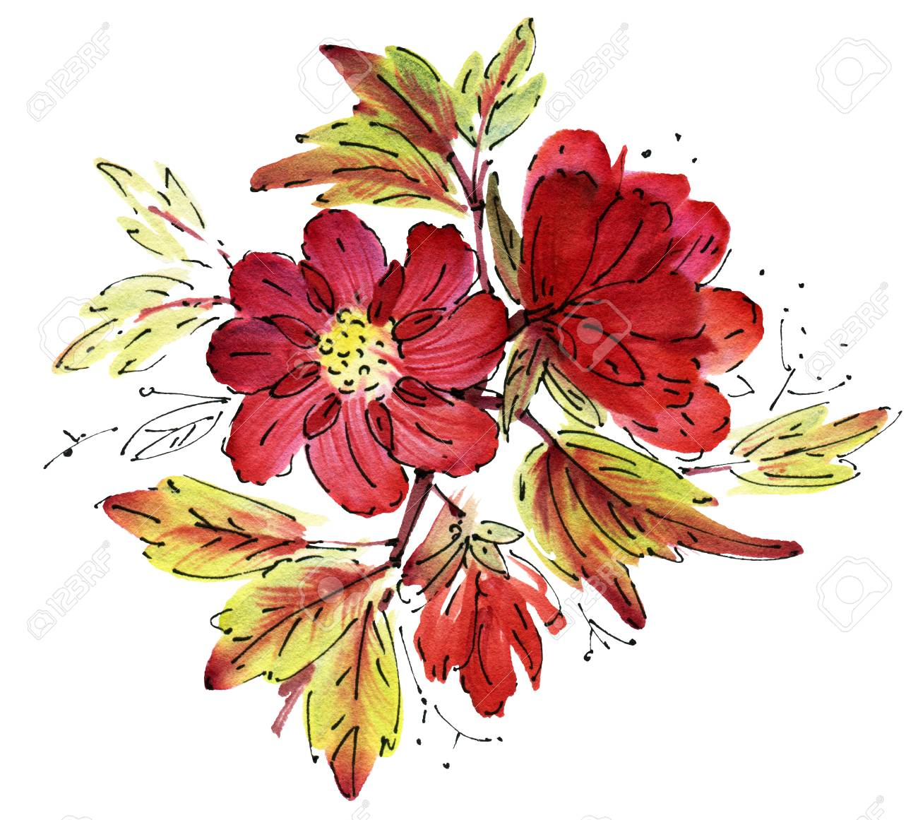 Red Watercolor Flowers Isolated On A White Background. Hand-drawn ...