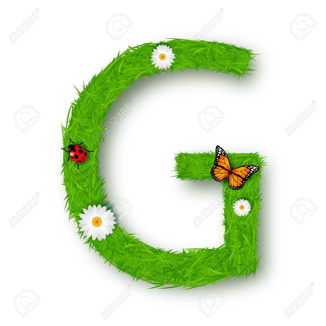 grass letter g on white background stock vector 18276436