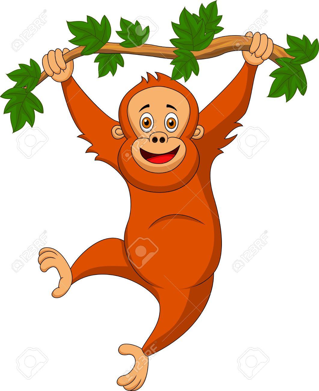 cute orangutan cartoon hanging on a tree branch royalty free