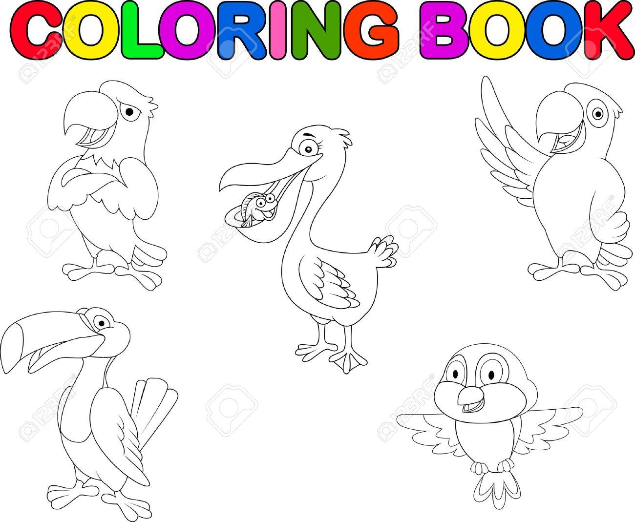 Colección Del Pájaro De Libro Para Colorear Ilustraciones ...