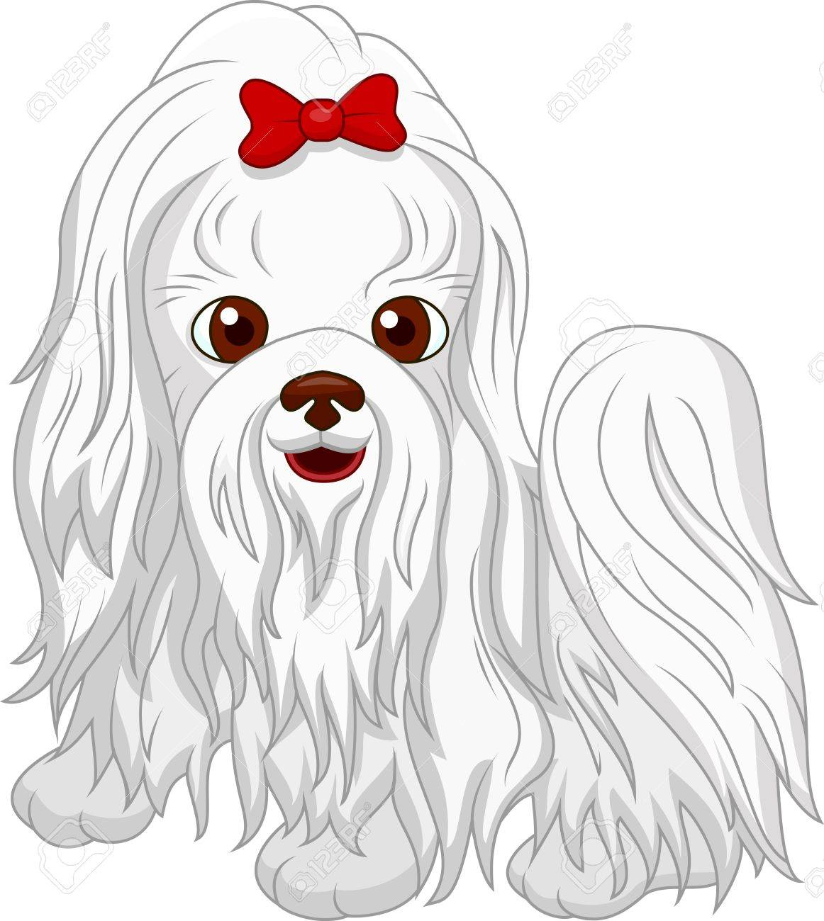 2 058 maltese dog stock illustrations cliparts and royalty free rh 123rf com clipart maltese cross fire maltese clipart