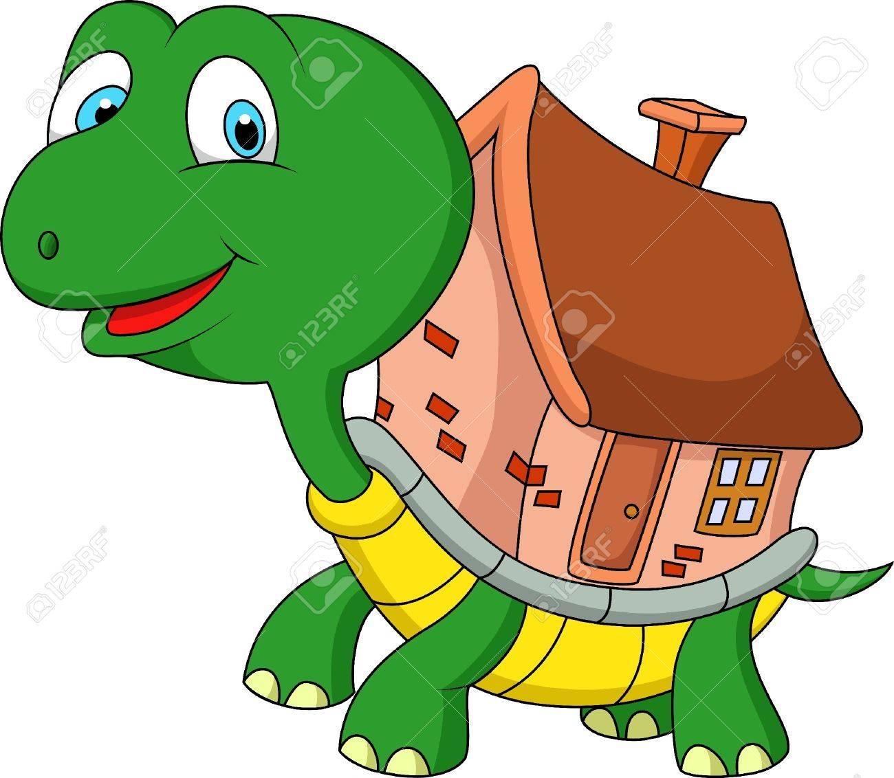 Brown Cartoon Turtle Shell Turtle Shell Turtle Cartoon