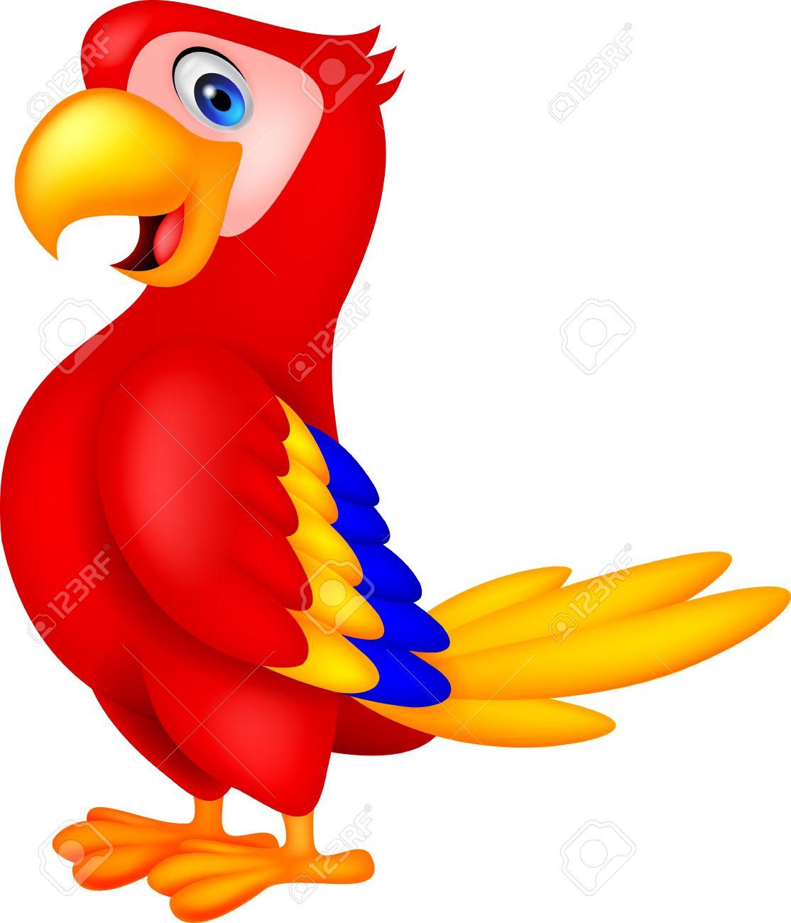 cute parrot bird cartoon royalty free cliparts vectors and stock