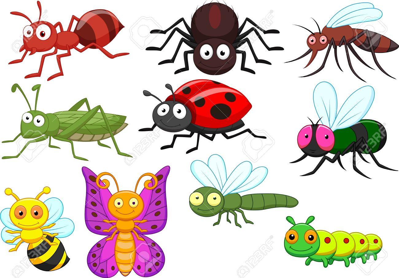 Resultat d'imatges de dibujo de insectos