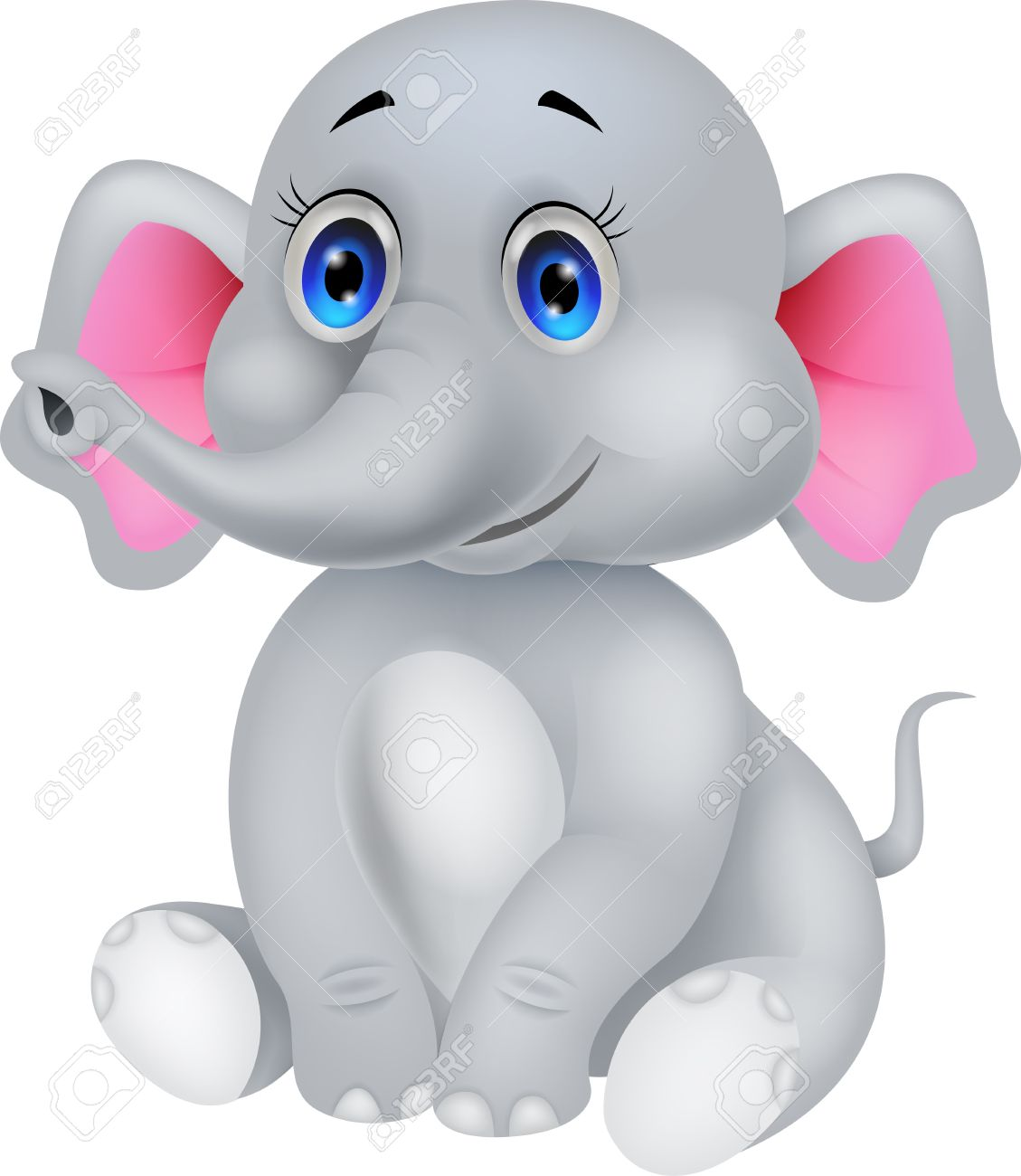elephant nose images u0026 stock pictures royalty free elephant nose