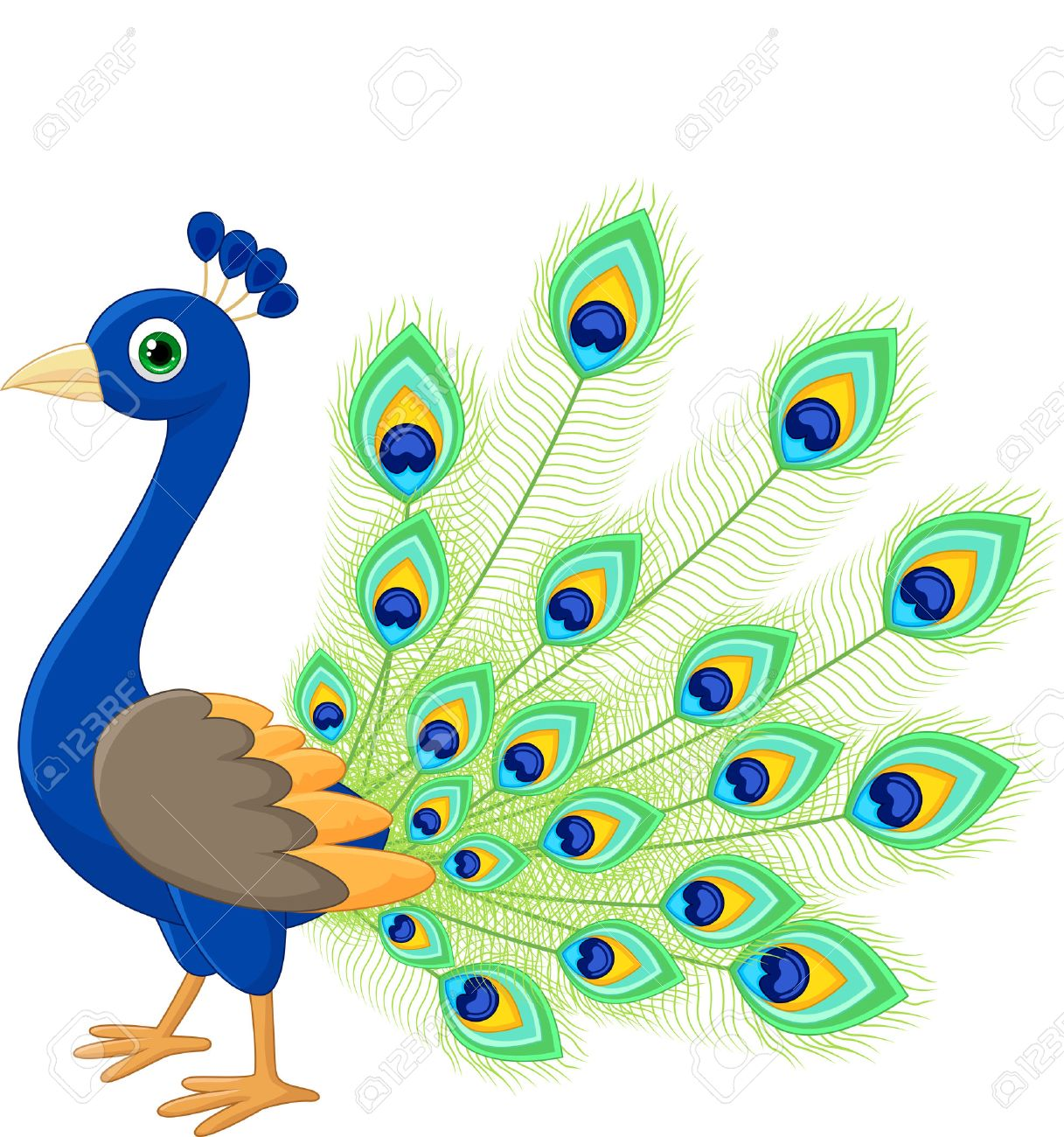 peacock cartoon royalty free cliparts vectors and stock rh 123rf com peacock clipart png peacock clip art for invitations