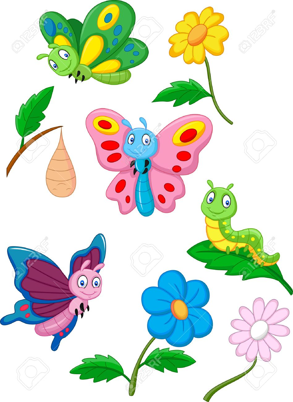 Cartoon Butterfly Caterpillar And Cocoon Royalty Free Cliparts Vectors And Stock Illustration Image 33367183