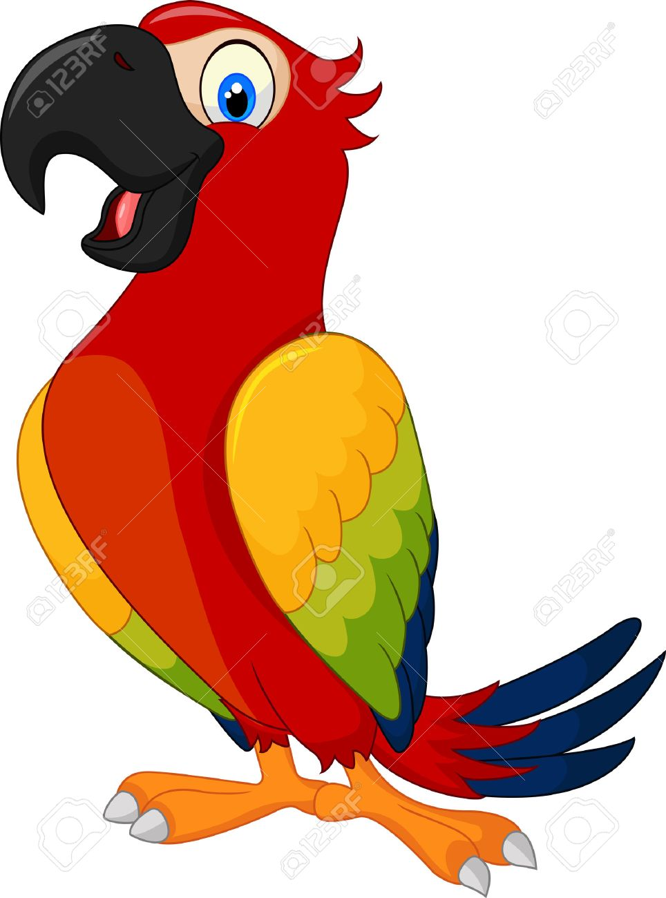 Cartoon Cute Parrot Royalty Free Cliparts Vectors And Stock Illustration Image 40496732
