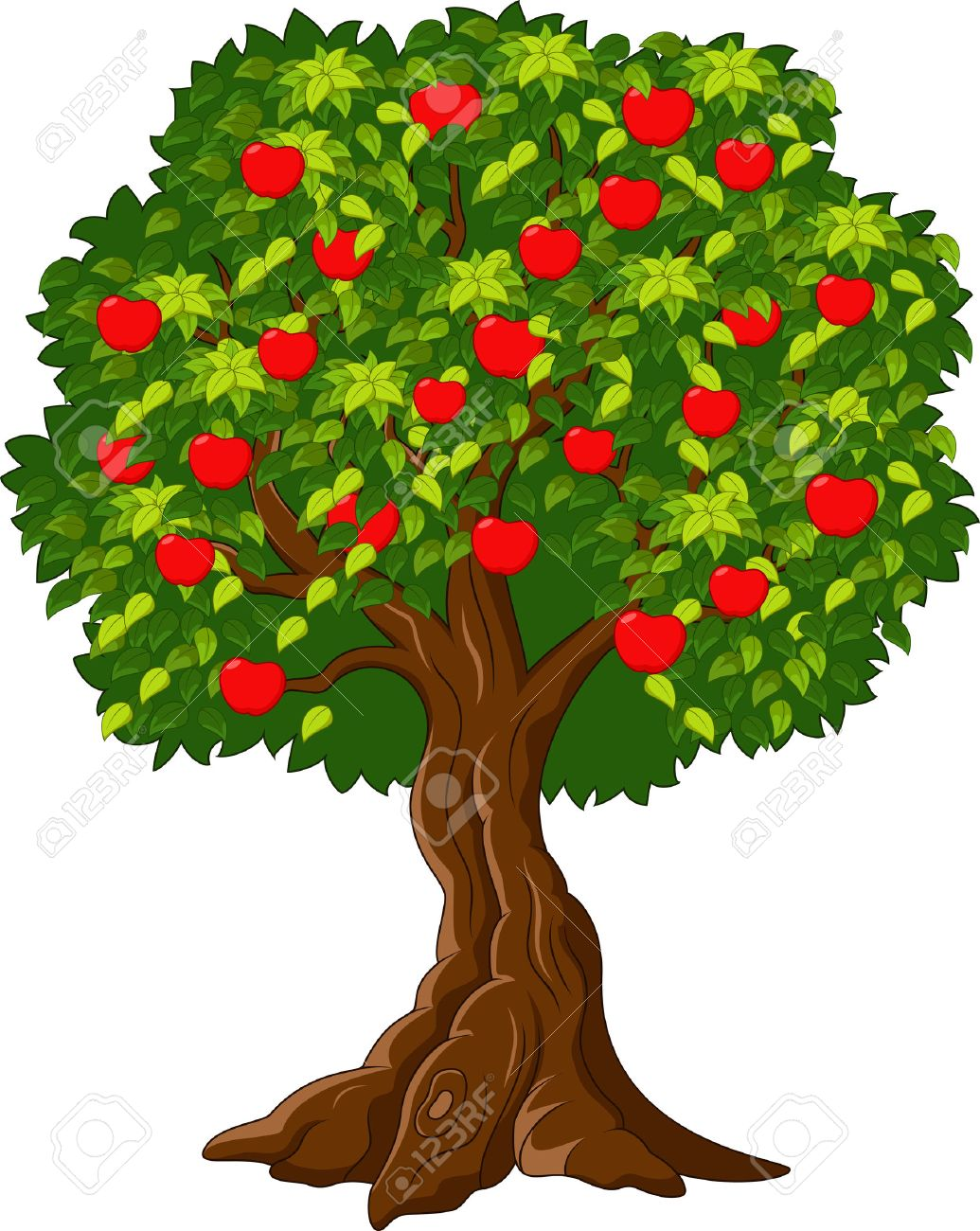 105 887 fruit tree cliparts stock vector and royalty free fruit rh 123rf com apple tree leaf clipart apple tree clipart png