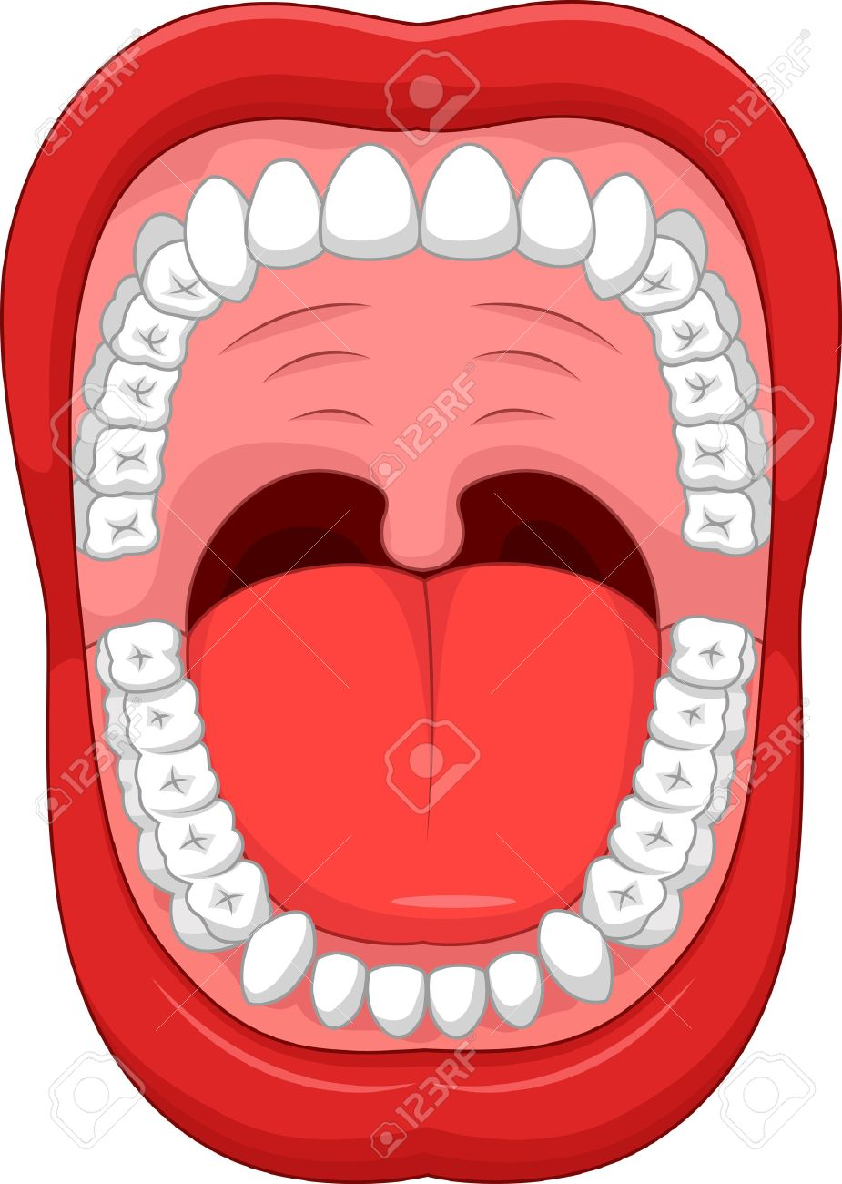 parts of human mouth cartoon open mouth and white healthy tooth rh 123rf com open mouth cartoon t shirt open mouth cartoon vector