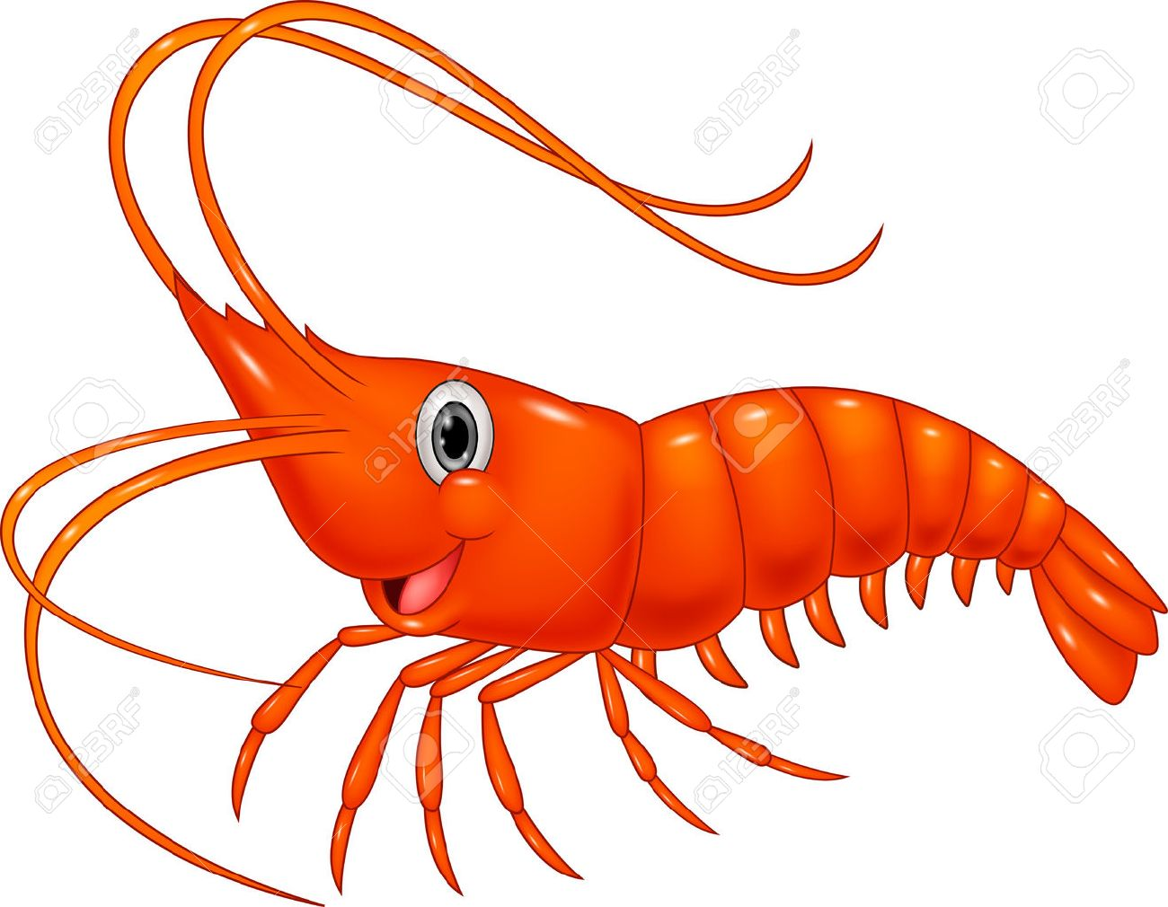 21 566 shrimp stock illustrations cliparts and royalty free shrimp rh 123rf com shrimp clipart free shrimp clipart black and white