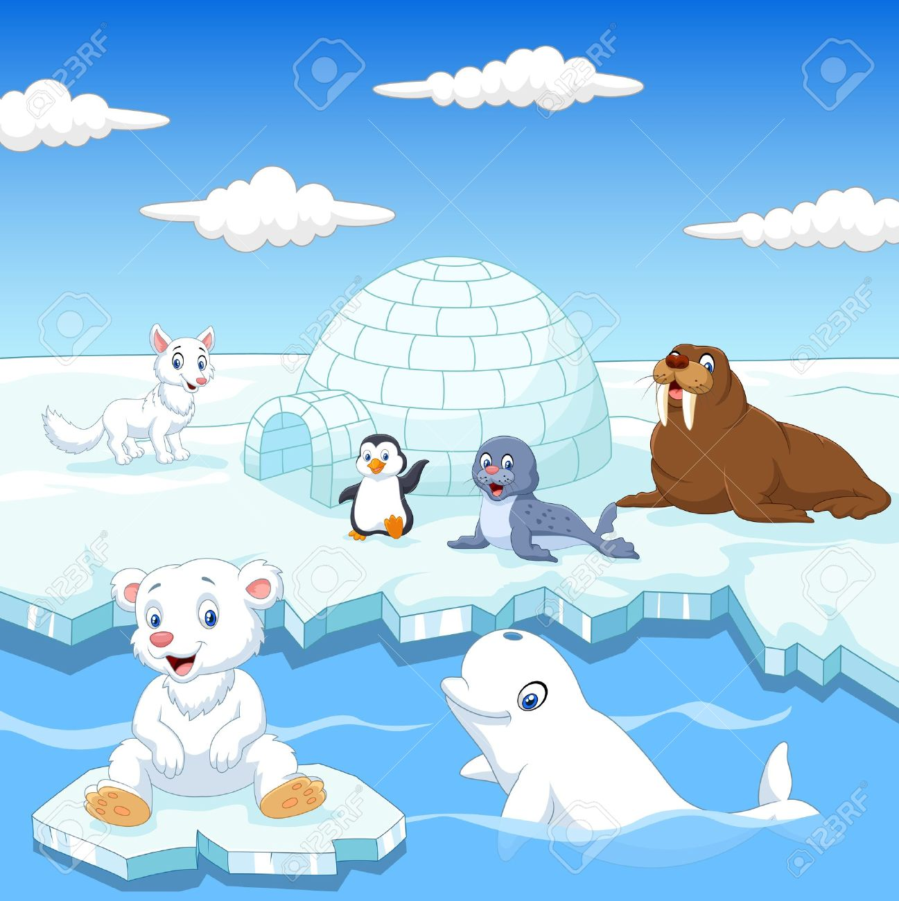 illustration of Arctics animals collection set with igloo ice house Stock Vector - 45971237