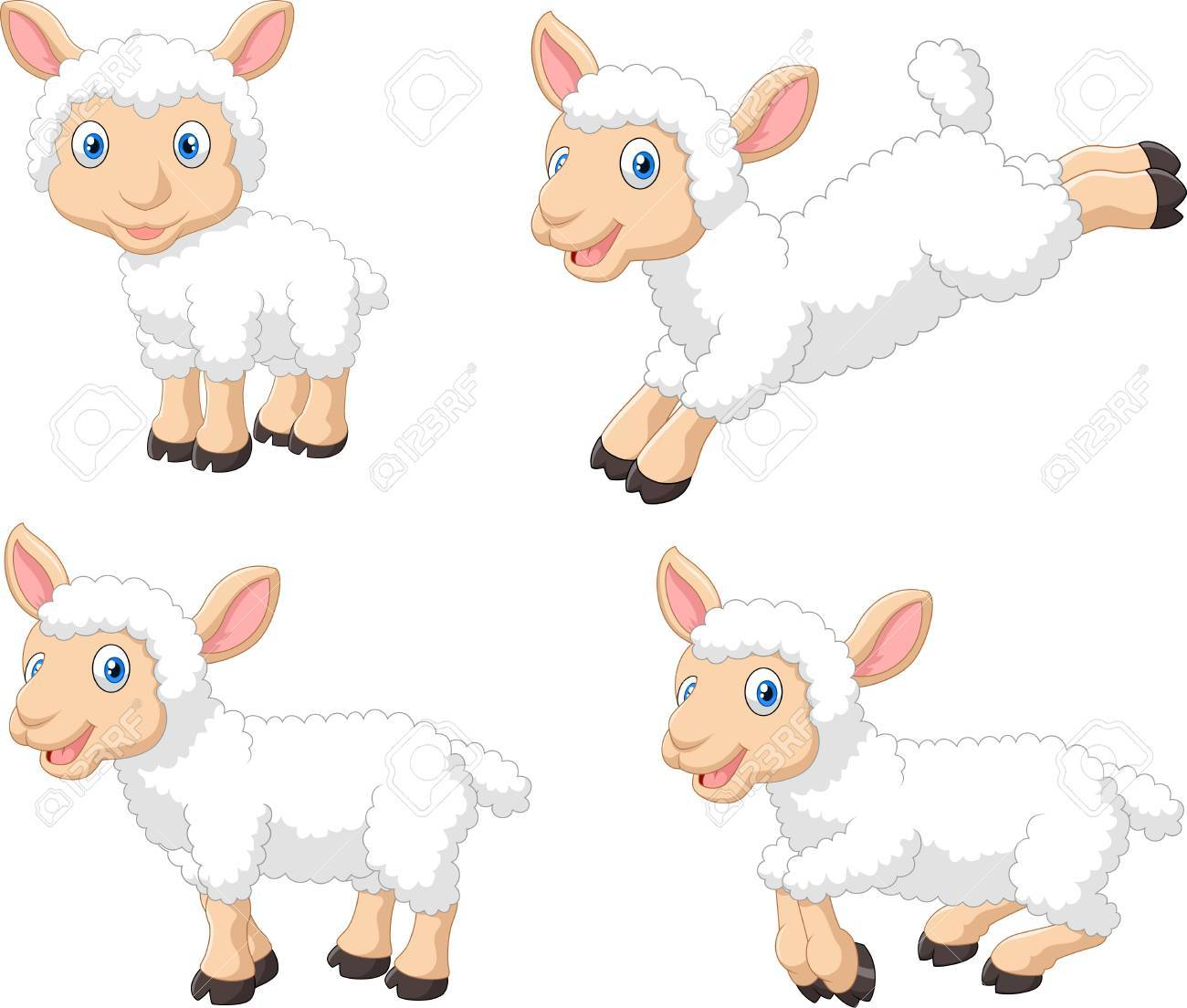 illustration of Cute cartoon sheep collection set, isolated on white background - 45971242