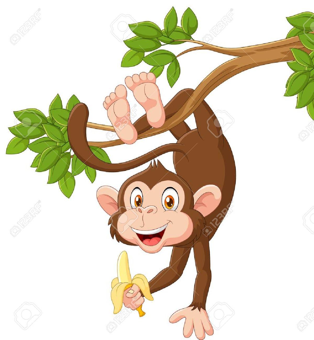 Vector illustration of Cartoon happy monkey hanging and holding banana Stock Vector - 49007639