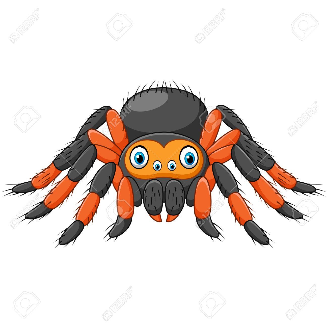 Vector Illustration Of Cartoon Spider Tarantula With Red Knees ...