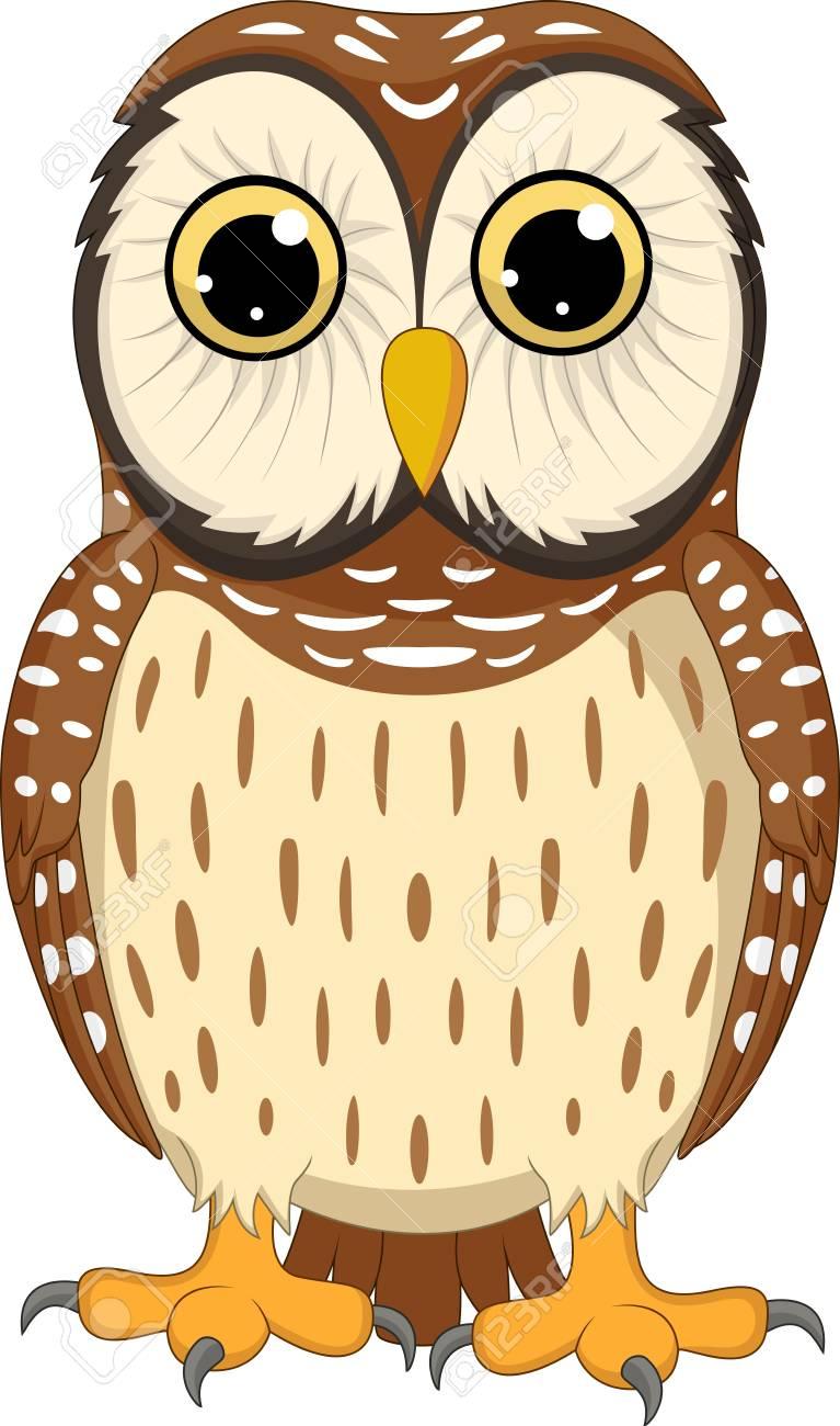 vector illustration of cartoon owl isolated on white background