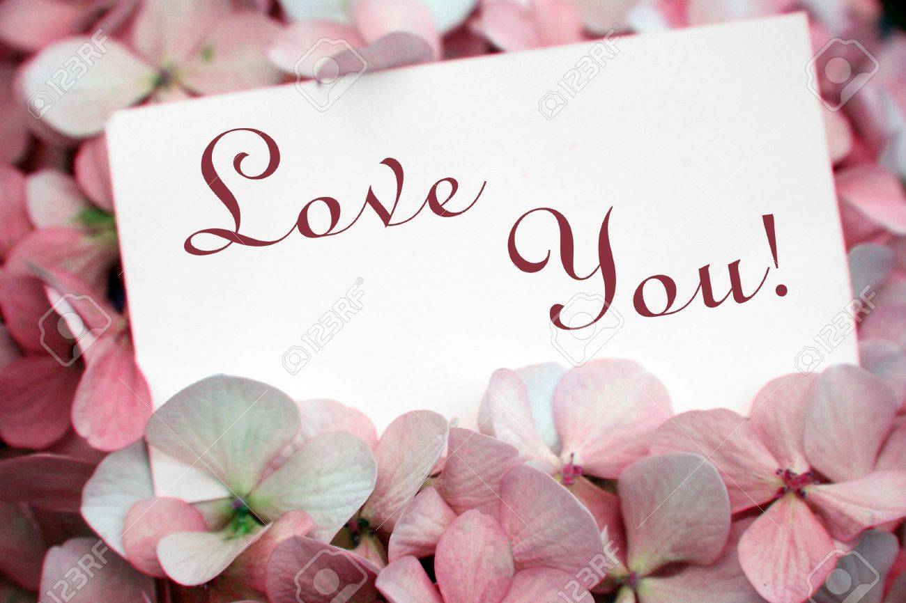 flowers with love card Stock Photo - 741271