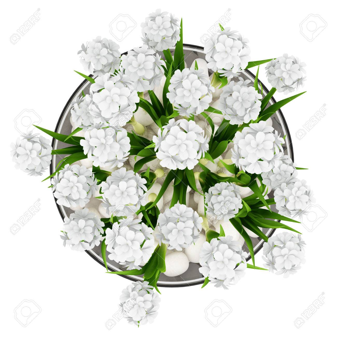 Top view of flowers in glass vase isolated on white background stock stock photo top view of flowers in glass vase isolated on white background mightylinksfo