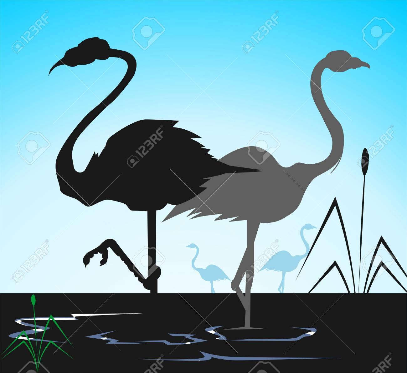 Illustration of two cranes in water Stock Photo - 3417917