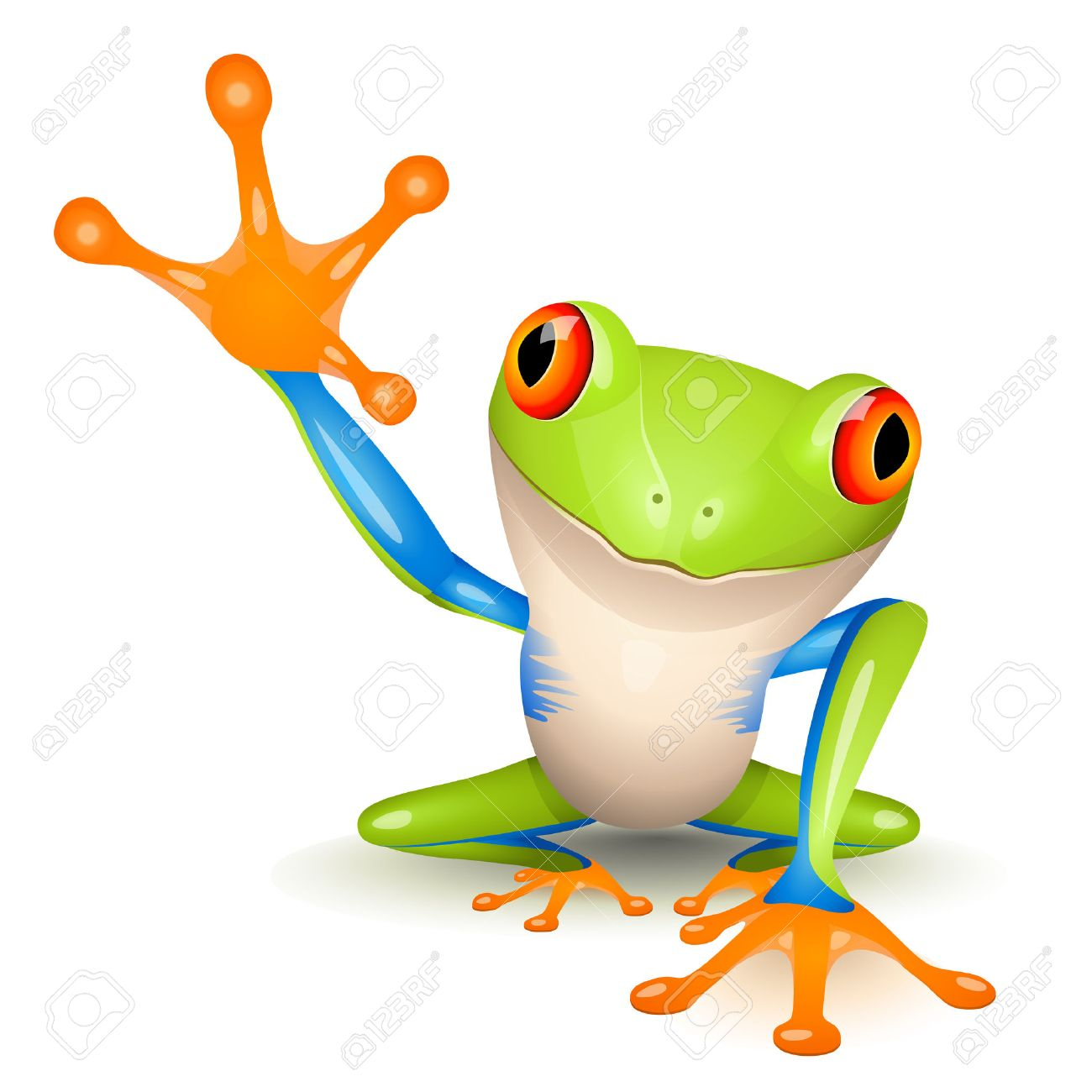 green tree frog images u0026 stock pictures royalty free green tree