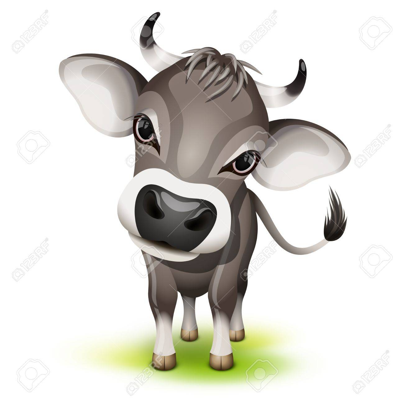 little swiss cow with a cocked head royalty free cliparts vectors