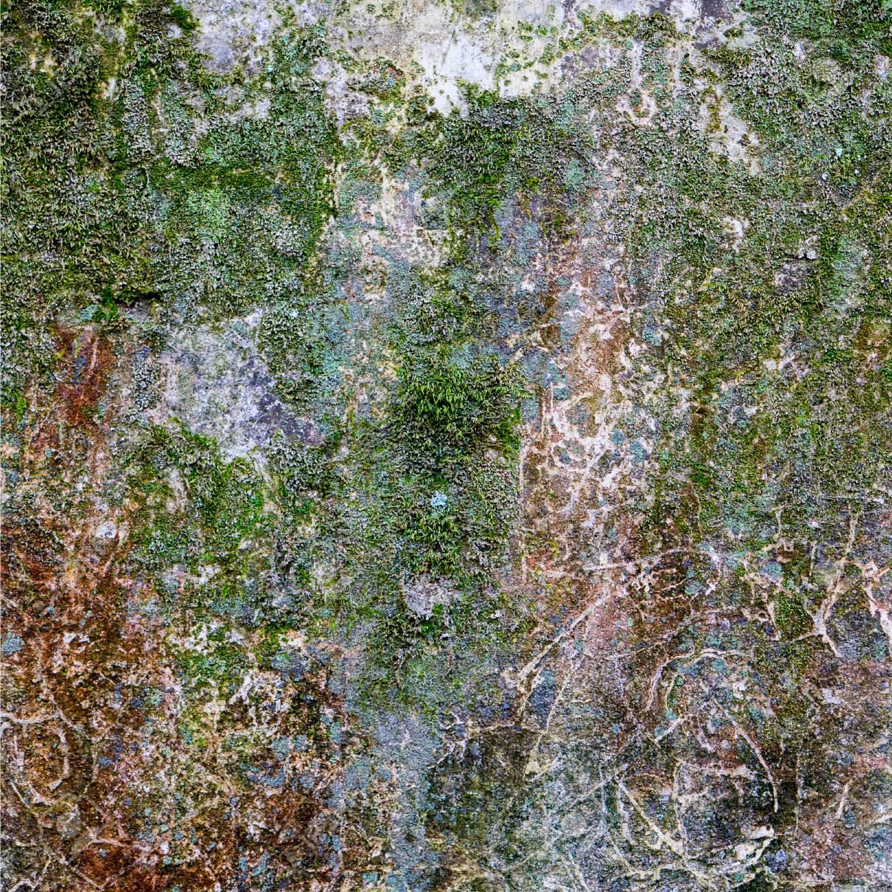 Carta Da Parati Su Muro Ruvido.Parete Ruvida Coperta Da Muschio Sfondo Di Foto Di Qualita Per Lavori 3d O Carta Da Parati Sfondo