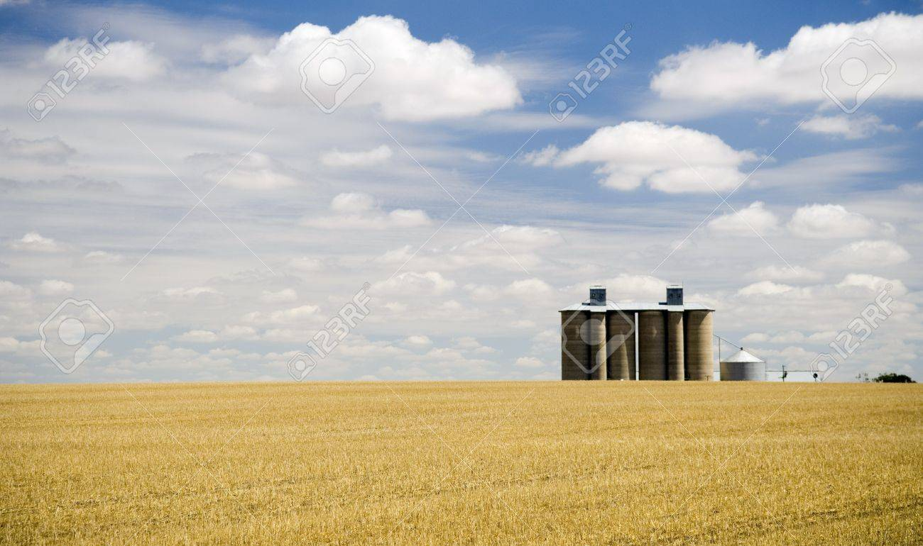 Harvested field with grain silo and fluffy white clouds Stock Photo - 6949747