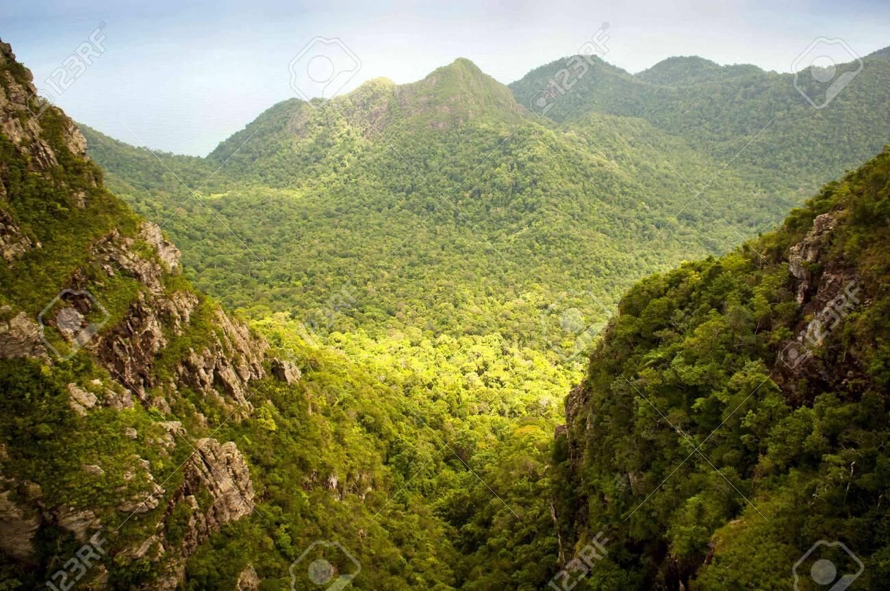 Spectacular jungle landscape with mountain range Stock Photo - 10388020
