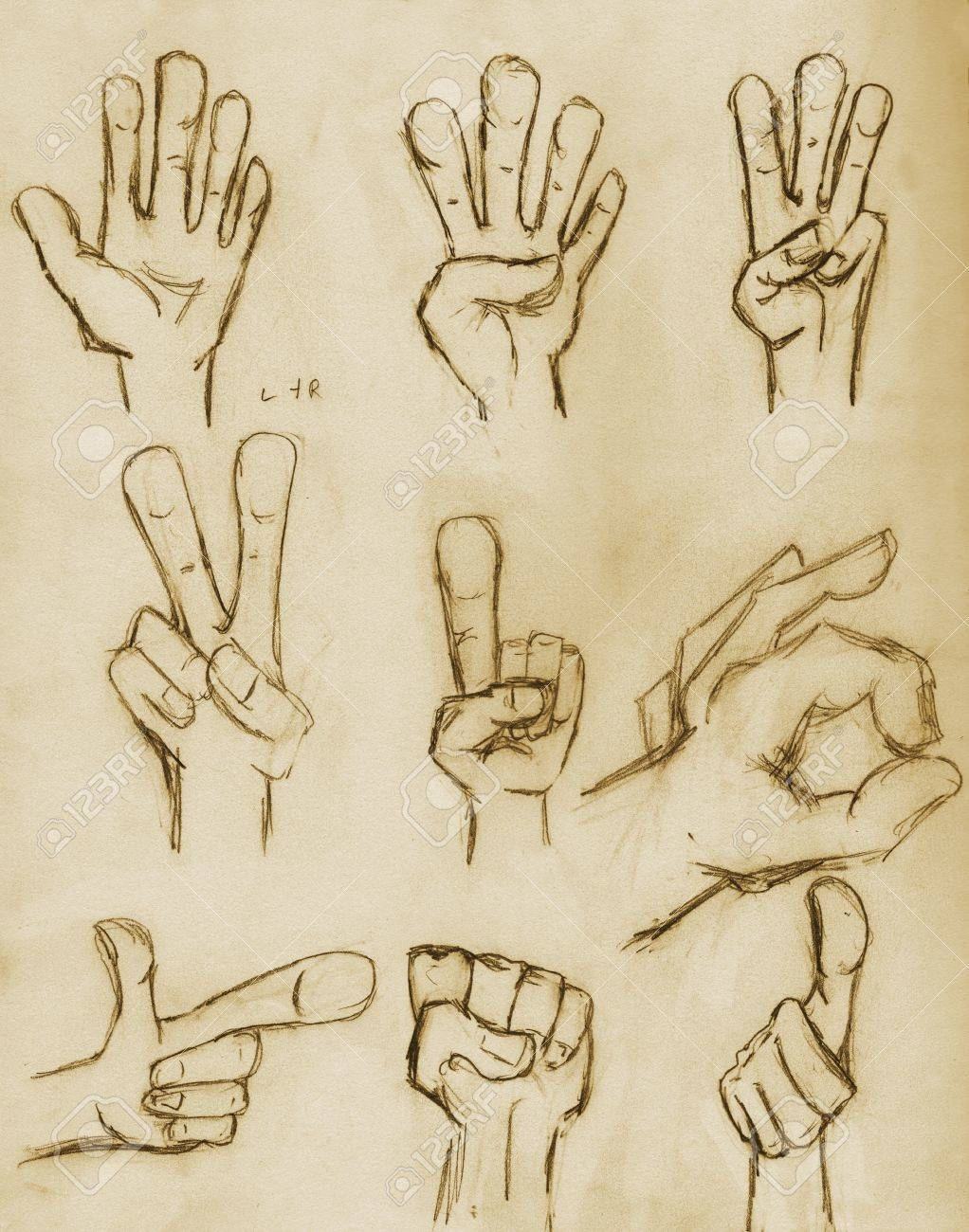 Hands sketched in pencil on vintage paper with sepia tone Stock Photo - 16403631
