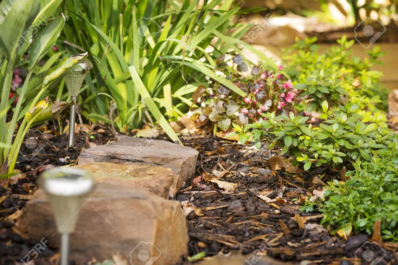 Conception d\'aménagement paysager dans un jardin avec des pierres, des  lampes solaires et les plantes