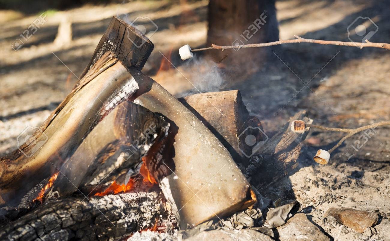 Person Roasting Marshmallows On A Stick Over Campfire While Camping Stock Photo