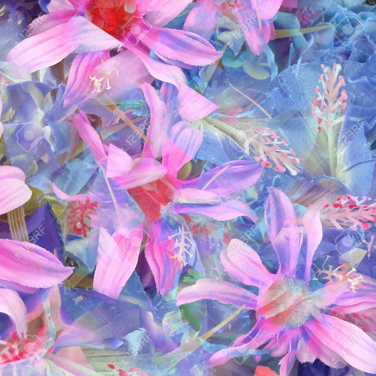 blooming pink and blue daisy flower abstract background - 139560488