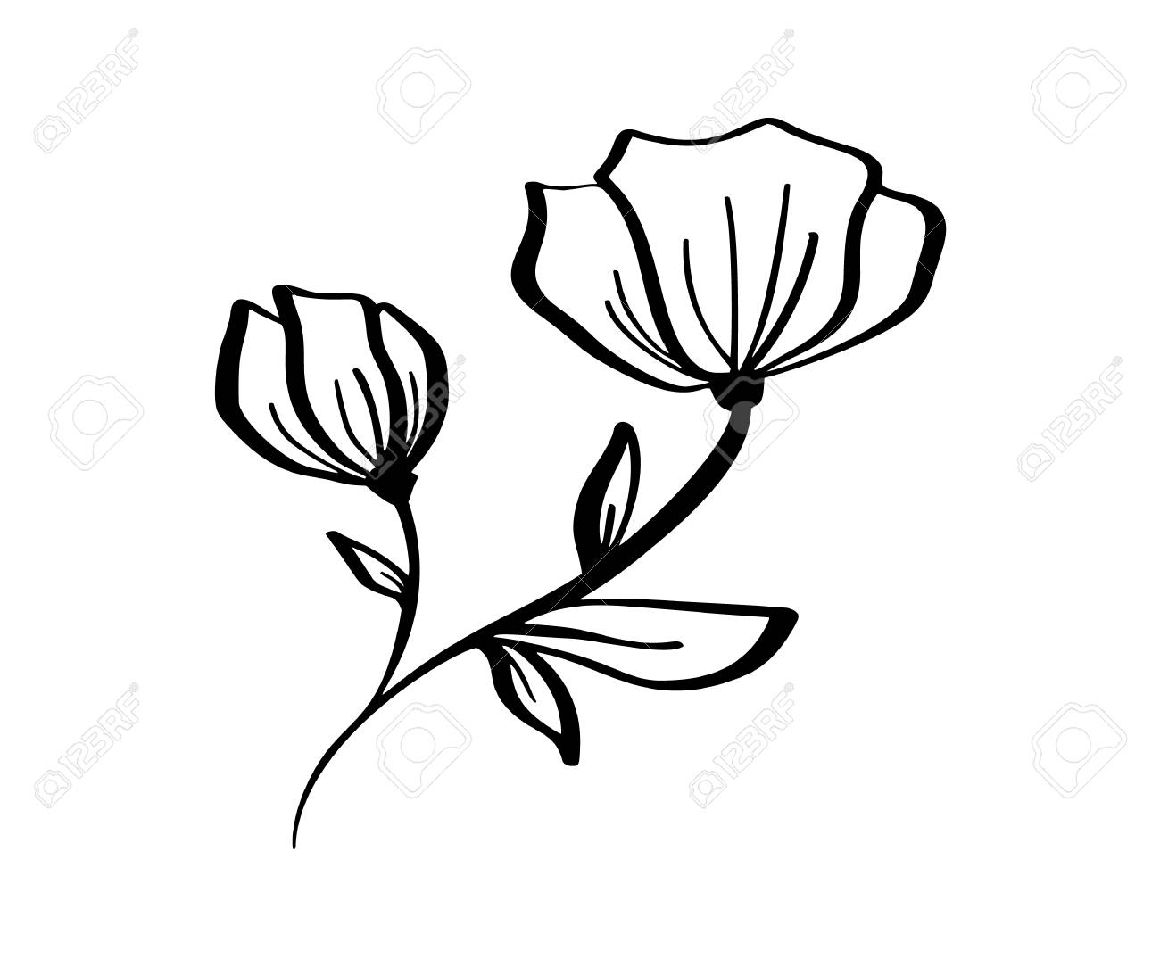 Hand drawn modern flowers drawing and sketch floral with line,art,..