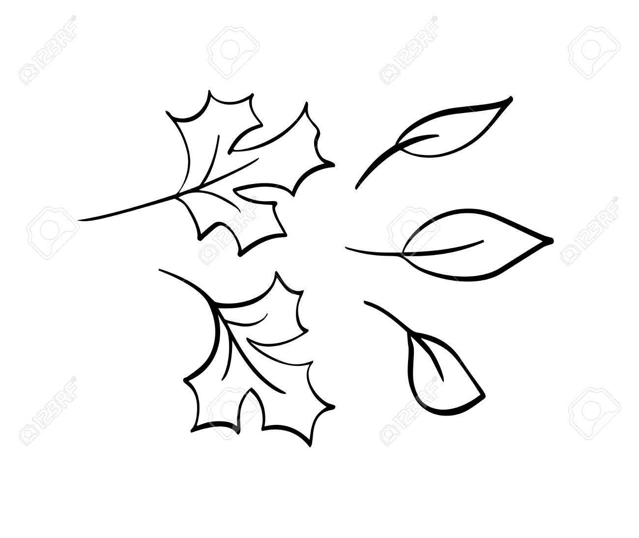 Vector Collection Of Hand Drawn Autumn Leaves Isolated Sketch Royalty Free Cliparts Vectors And Stock Illustration Image 122805501