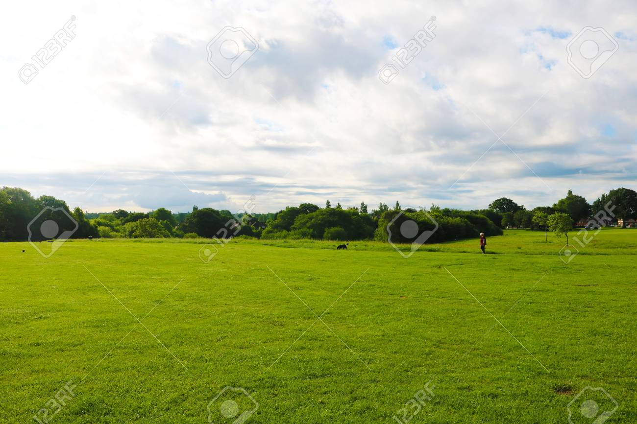 Playing park field Stock Photo - 79672551