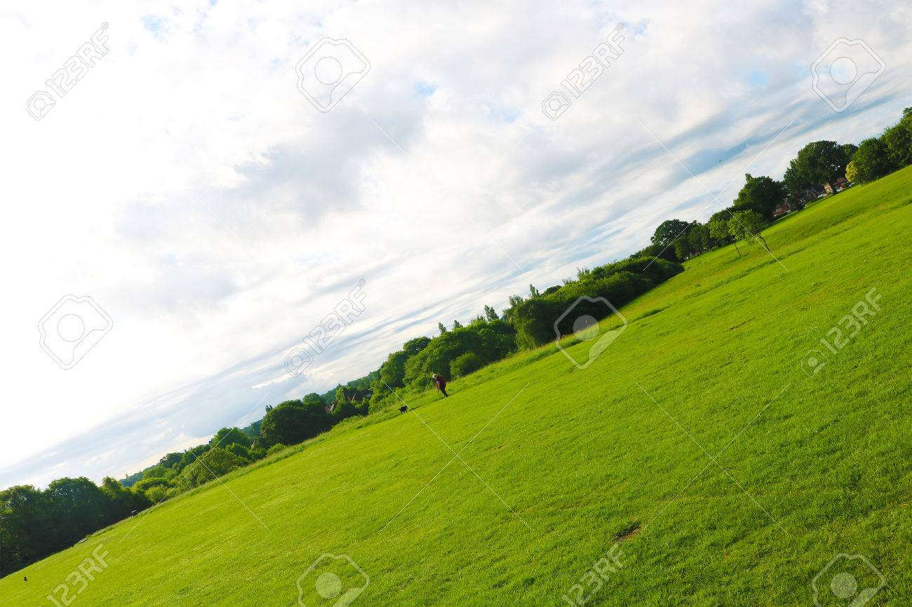 Playing field on a summers day Stock Photo - 79871071