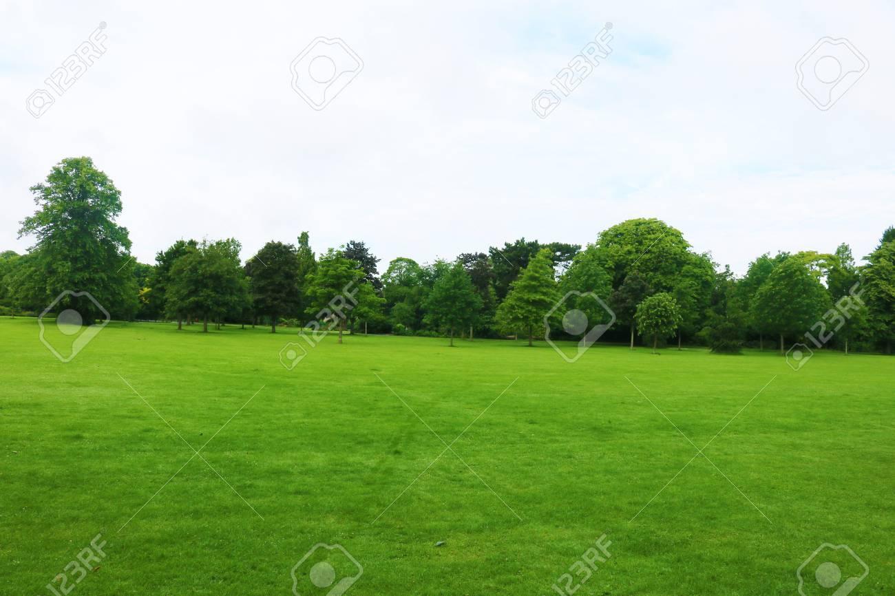 Summers day in park in Birmingham kingsheath Stock Photo - 80748169