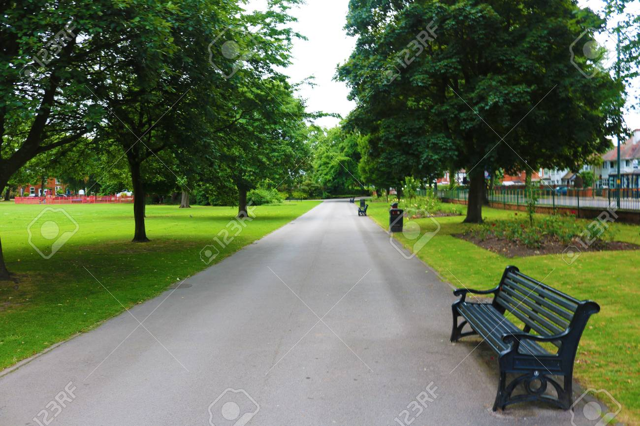 Park path trees and bench Stock Photo - 81488905
