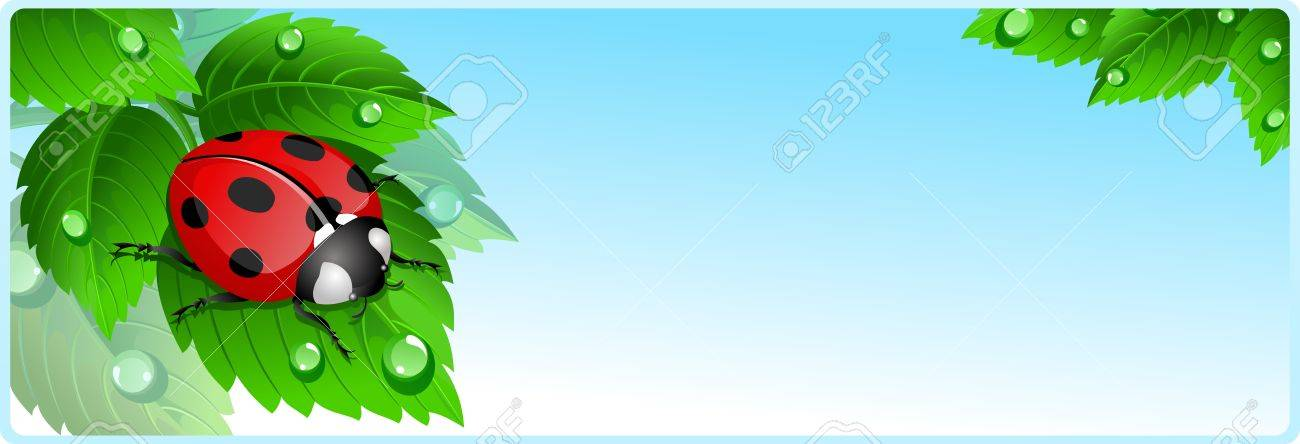 banner with ladybug royalty free cliparts vectors and stock