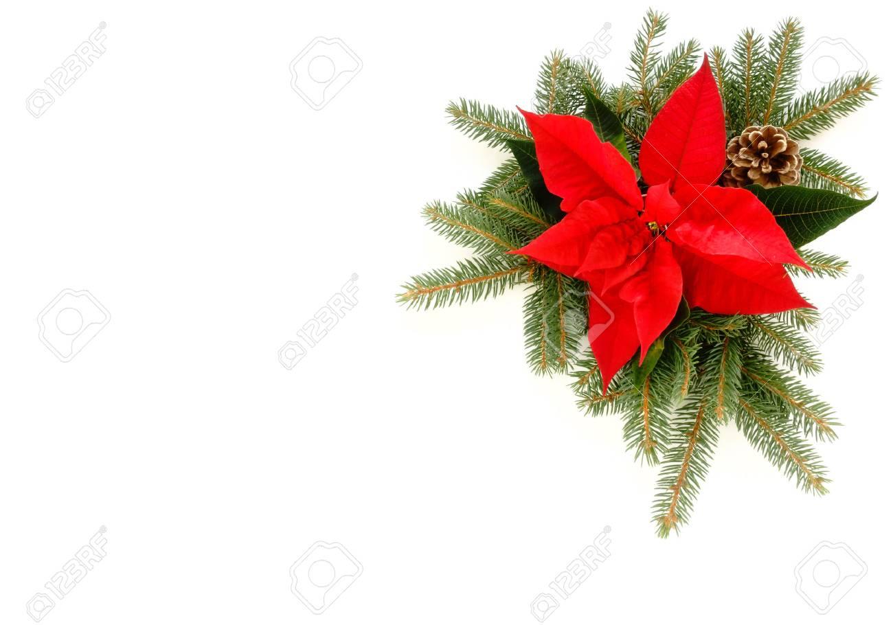 Weihnachtsstern Für Tannenbaum.Stock Photo