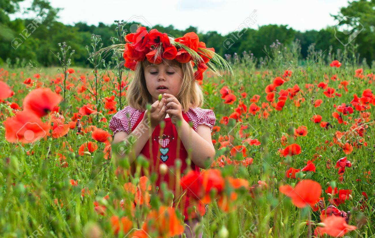Little girl in a wreath from poppies - 20628213