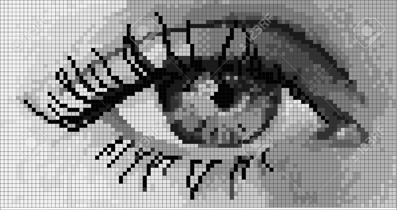 pixel art oeil