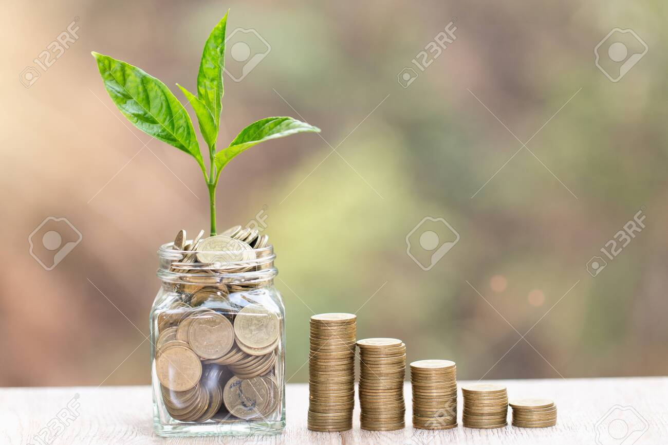 Plant growing in Coins glass jar for money saving and investment financial, concept for business, innovation, growth and money . - 121176394