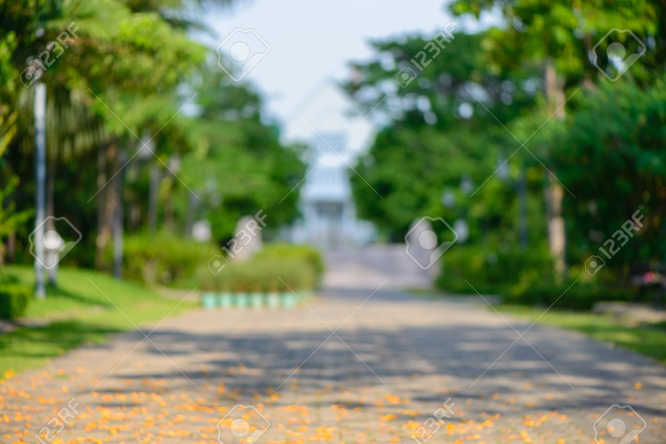 Background image blur - Blurred Background Blur Park With Bokeh Light Natural Background Stock Photo 46991026