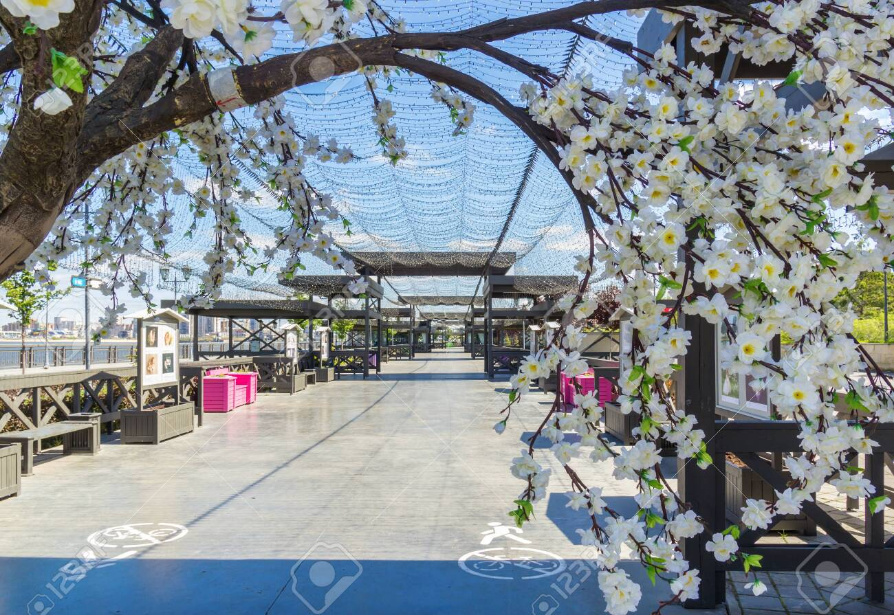 Kazan city, Republic of Tatarstan/Russia - may 24 2019: Flowers, alley, arch on the embankment - 142402789