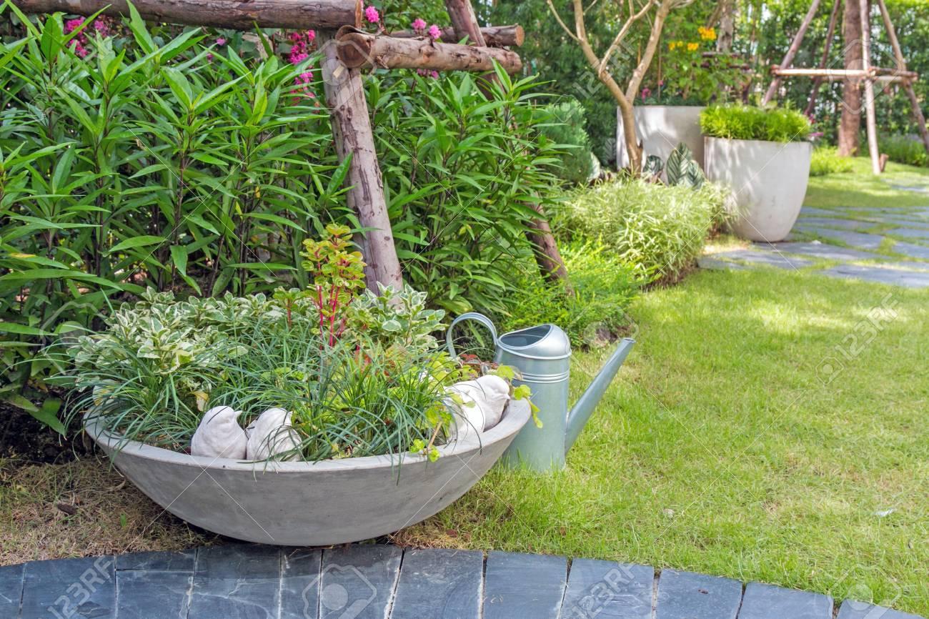 Sistemare Giardino Di Casa una piccola pianta è splendidamente sistemata in vasi con annaffiatoio nel  giardino di casa.