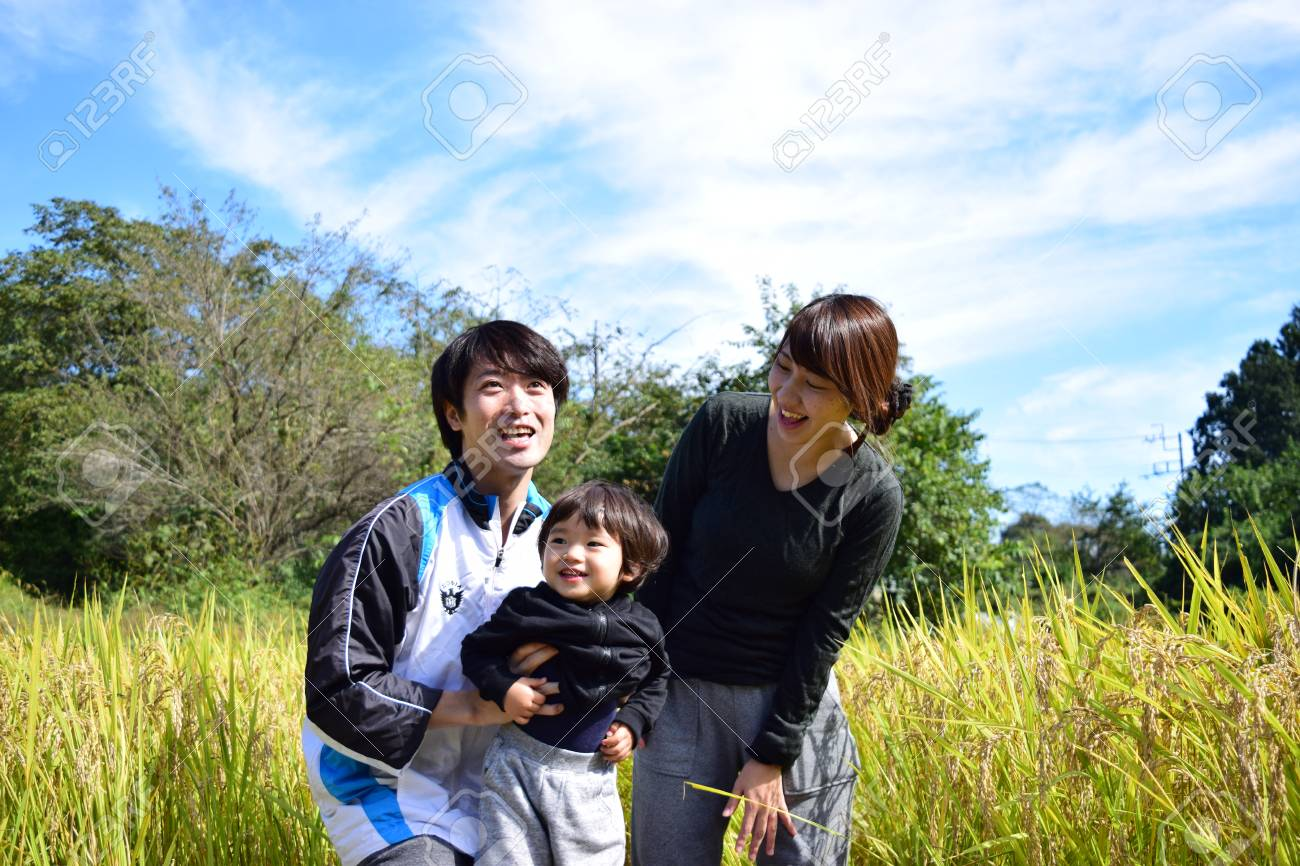 rice harvest with young family - 76839357
