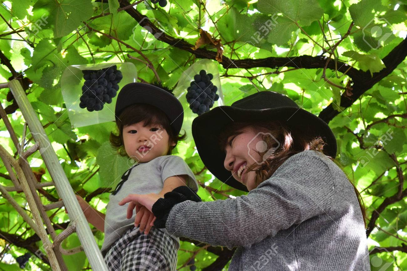 Young mother and her child eating grapes - 80201521