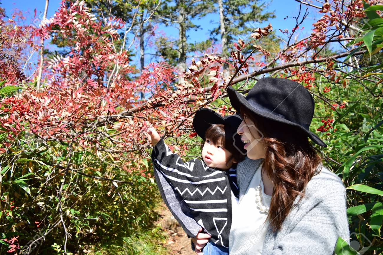 young japanese mother is playing with her son - 80201530
