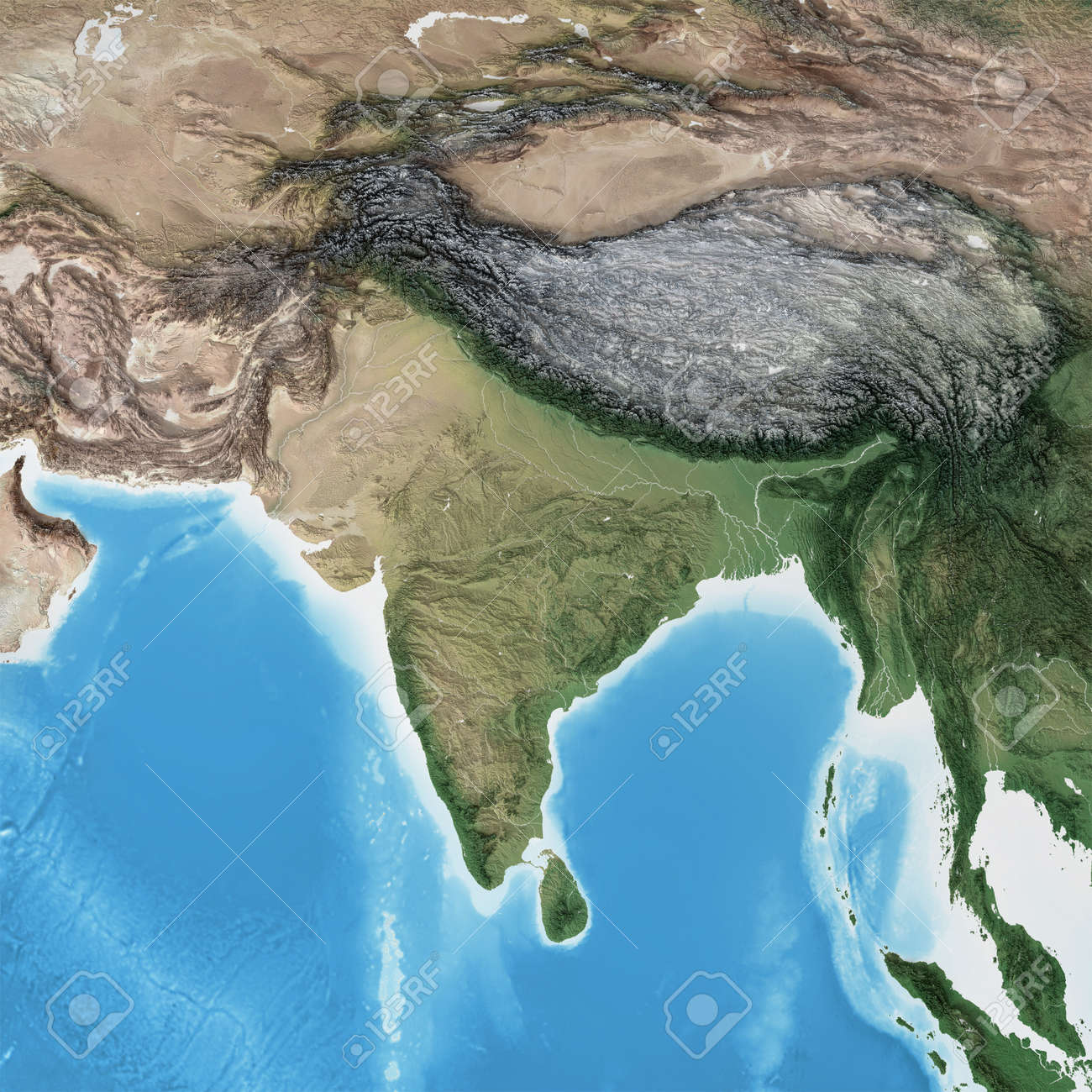 Physical map of South Asia, with high resolution details. Flattened satellite view of Planet Earth, its geography and topography. 3D illustration - 167169826